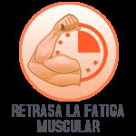 Retrasa la fatiga muscular