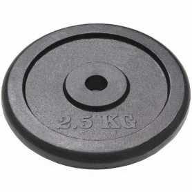 Disco de fundición 100% hierro pintados x 2.5 kilo