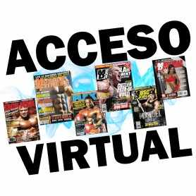 Acceso Virtual