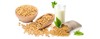 Proteínas Veganas | Soja | Arroz | Stevia | DeMusculos.com